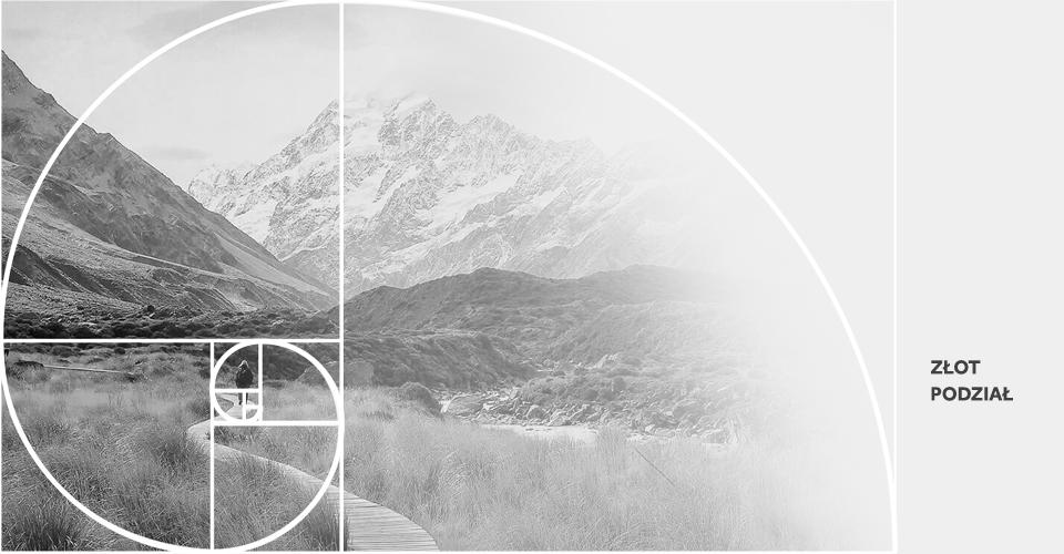 kompozycja zloty podział zdjęcie spirala fibonacciego