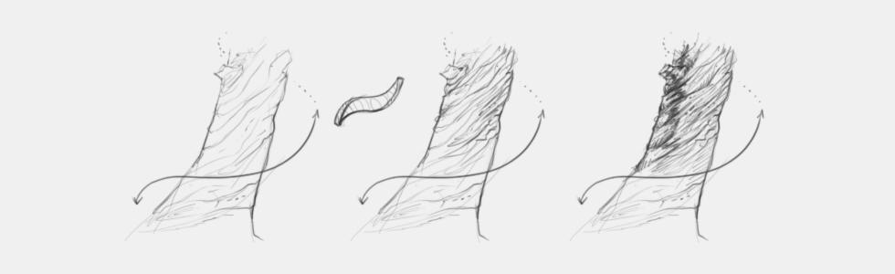 rysowanie drzewa drewna kory krok po kroku