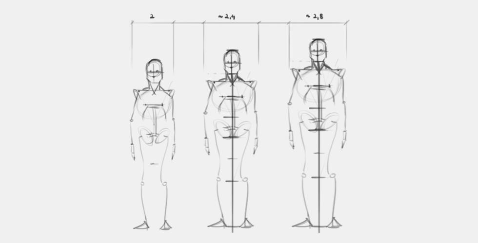 anatomia dla rysowników tutorial proporcje jak narysować człowieka