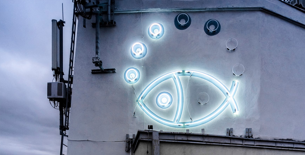 Neon ryba, Gdynia Redłowo - Traffic Design