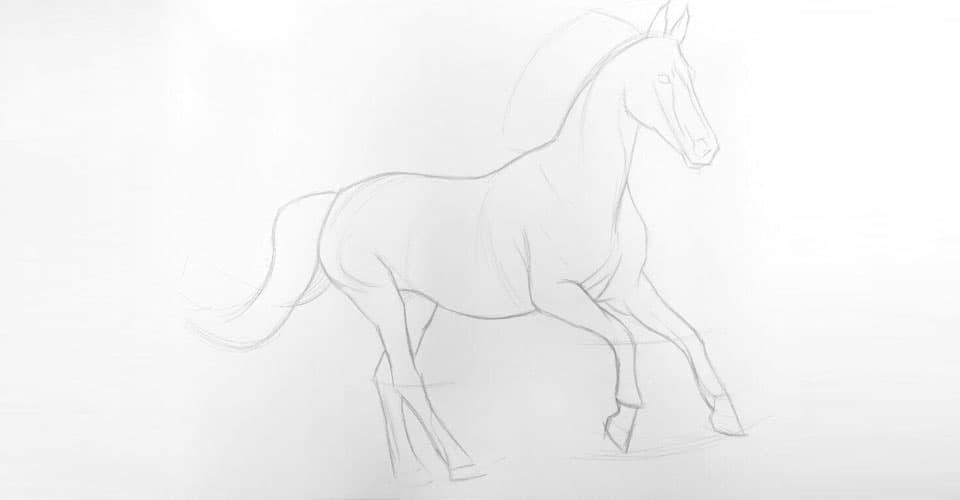 Rysunek konia - krok pierwszy.